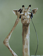 Girafe With Headphones